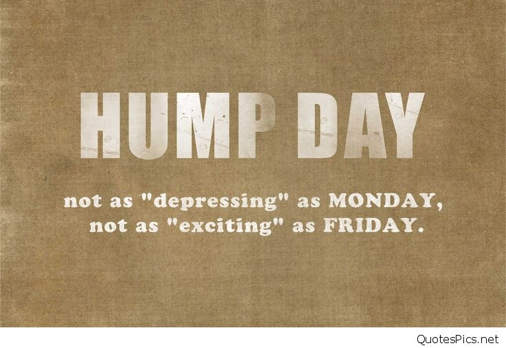 hump-day-quotes.jpg